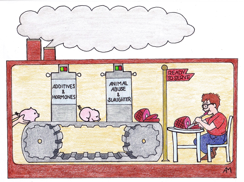 Meat Industry (Editorial) Anna Macias